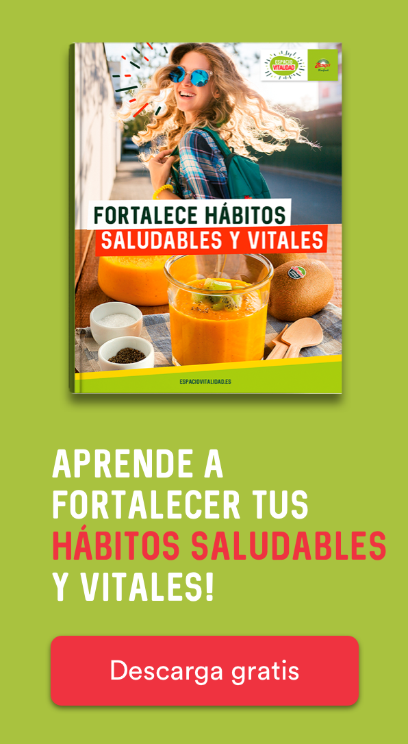 ZES - CTA Sidebar - eBook hábitos saludables