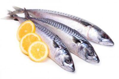 Pescado azul es rico en omega 3