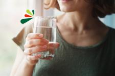 ¿Cuánta agua debes beber al día para activar tu vitalidad?